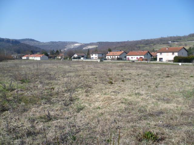 Photo du terrain